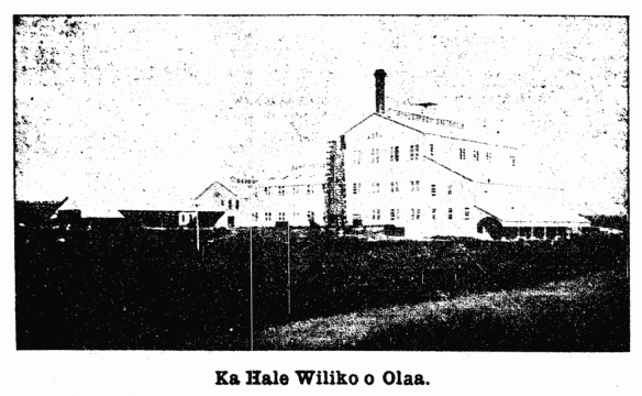 Ka Hale Wiliko o Olaa.