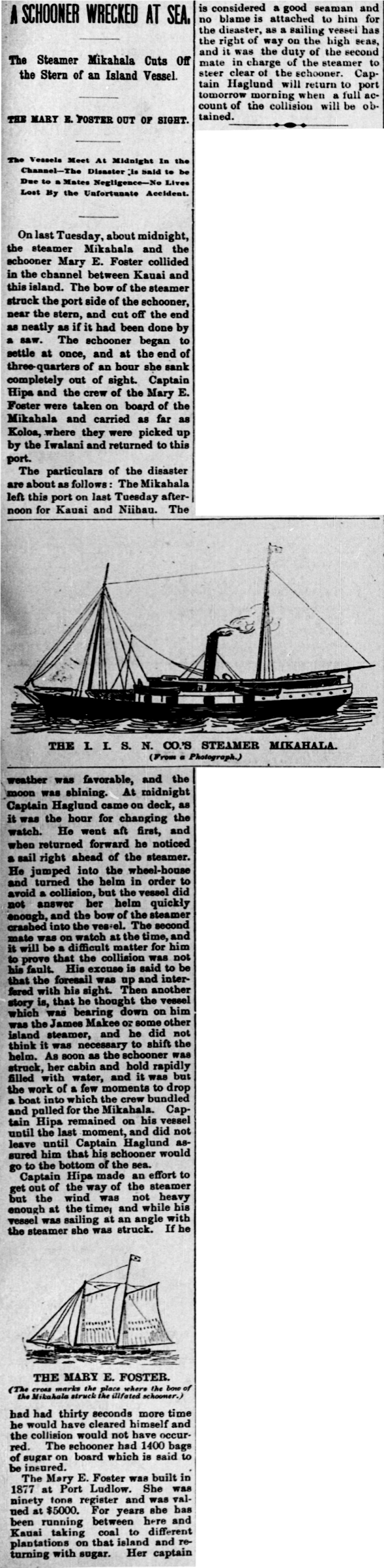 A SCHOONER WRECKED AT SEA.