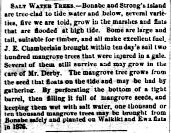 HawaiianGazette_3_22_1876_2.png